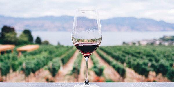 Exportaciones de vino español
