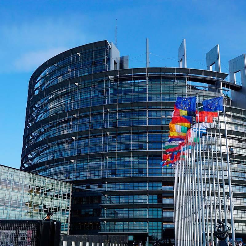 Red de ventas en el exterior y dependencia de España a la UE Oftex Empresa Consultora de Exportación